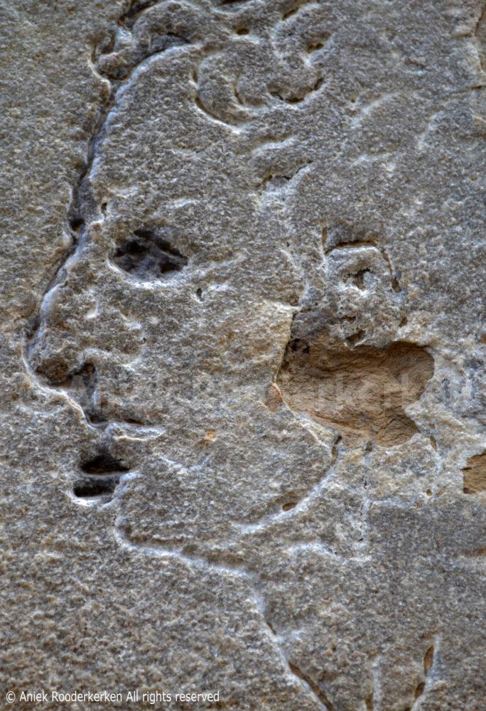 Verborgen portret van Michelangelo