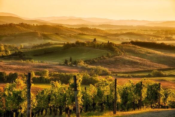 Bezoek Toscane in de herfst!