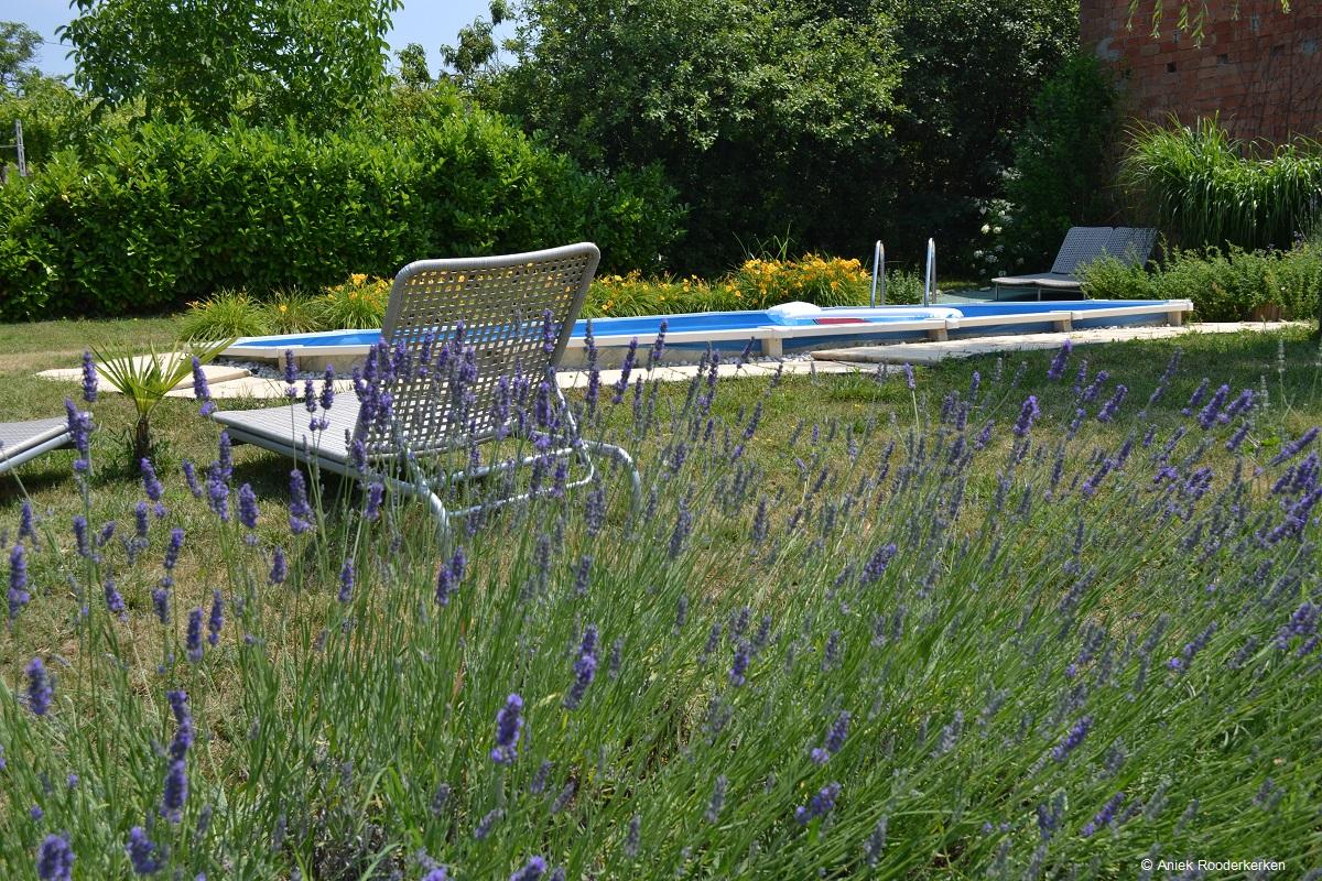 Zwembad, Villa i due padroni in de Oltrepo Pavese