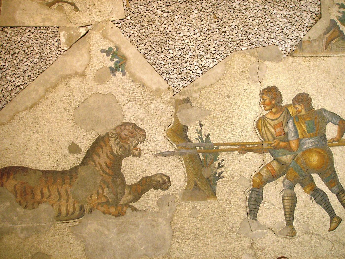 Vijfde eeuws mozaïek in het Paleis van Constantinopel met twee gladiatoren die tegen een tijger vechten.