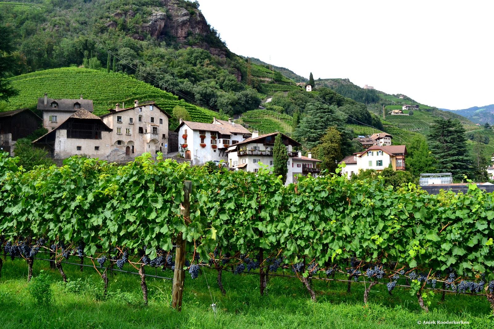 Rottensteiner, Zuid-Tirol