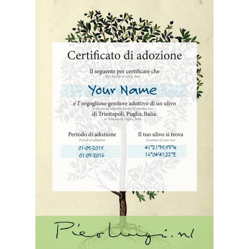 Het certificaat van de olijfboom adoptie