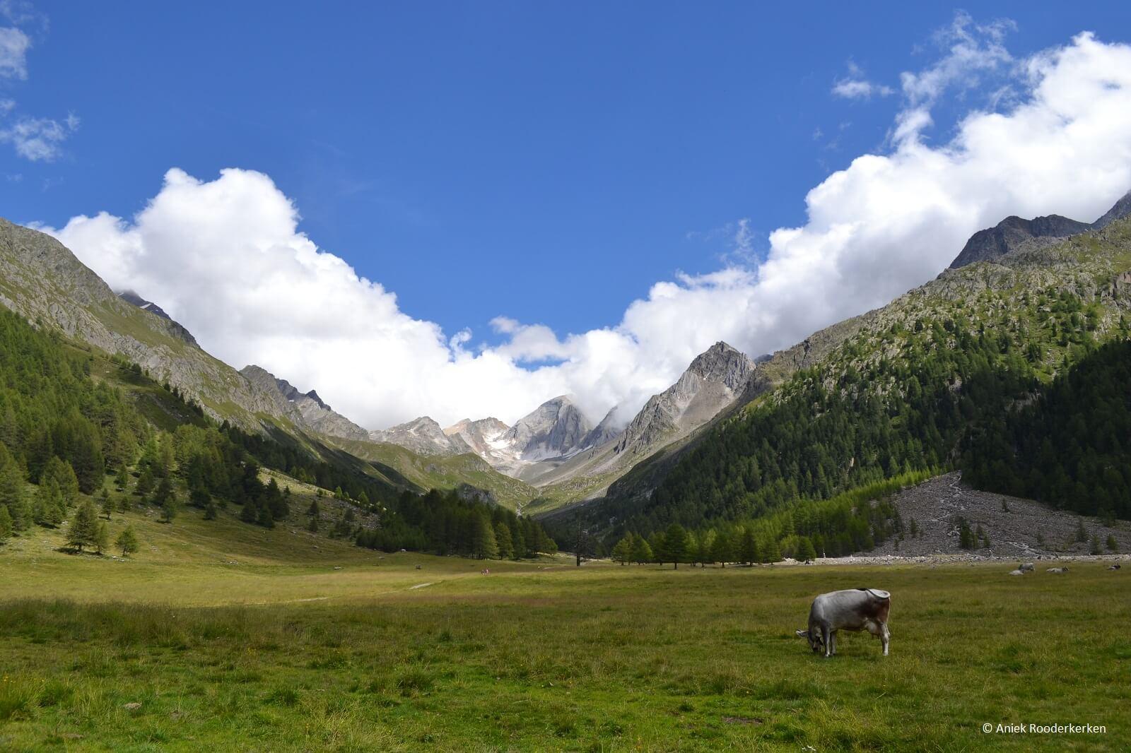Alta Via di Merano, Zuid-Tirol, Italië