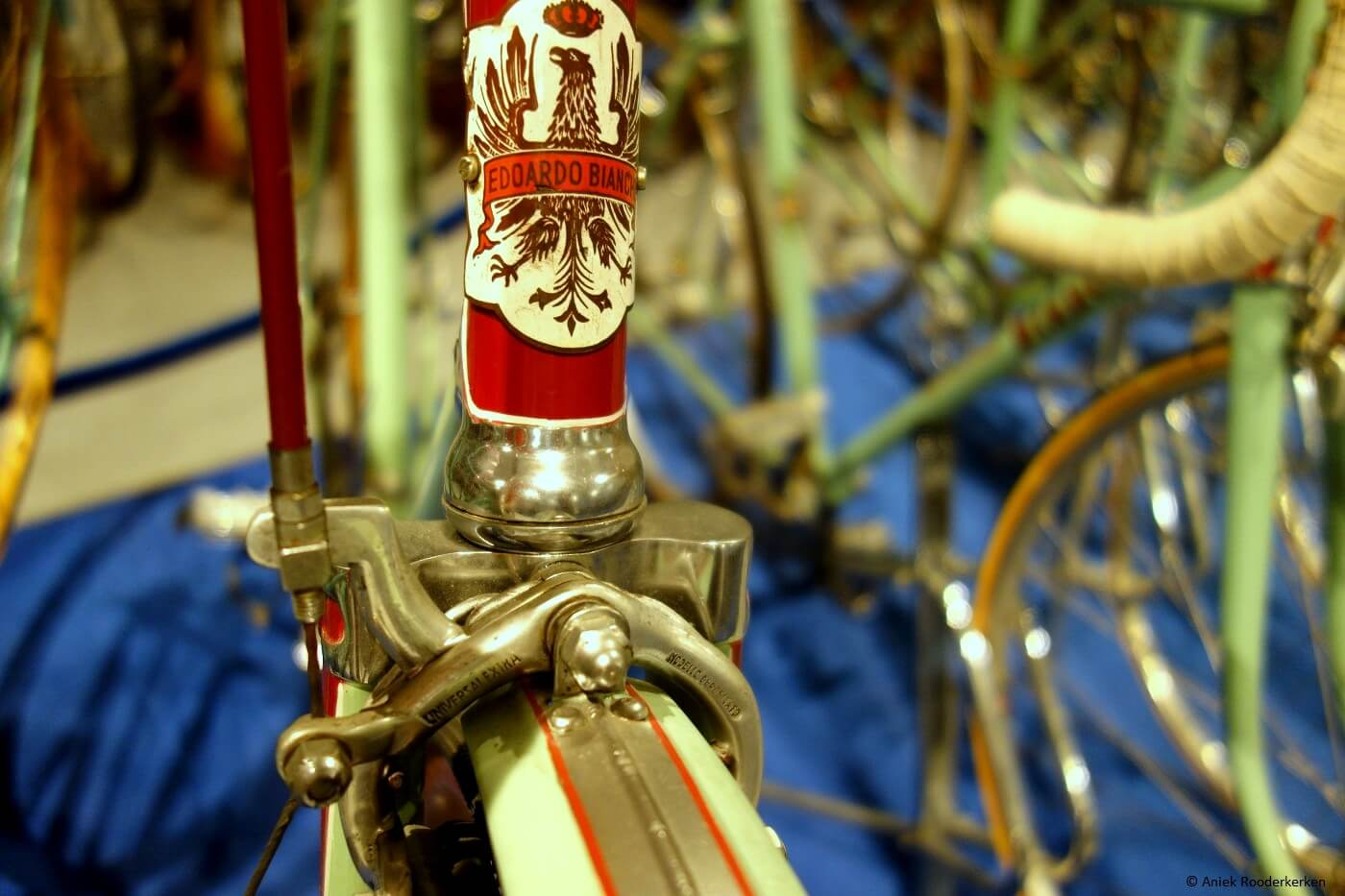 Bianchi Racefiets in Museo Nicolis