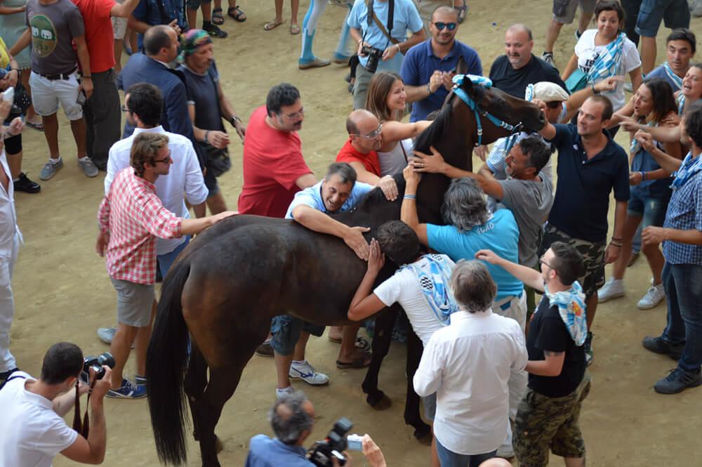 Bedanken van het paard bij de Palio van Siena. Foto door Henriëtte Bokslag