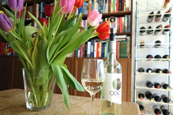 Cadeautip! De WineChill wijnkoeler