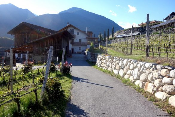 Overnachten bij de Ölackererhof. Een woonboerderij in Novacella / Neustift , vlakbij Bressanone / Brixen.