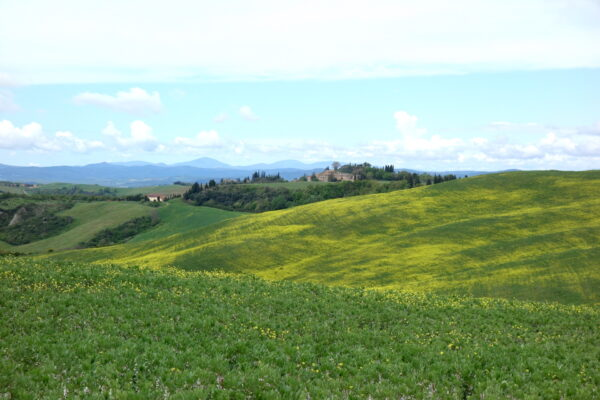 5 absolute must-sees in Chianti