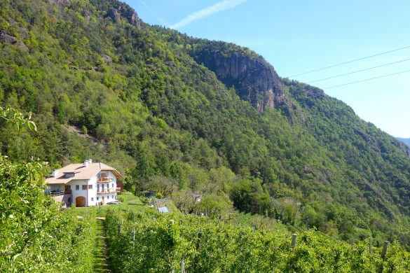 De Wernerhof bij Jenesien in Zuid-Tirol, overnachten bij Roter Hahn