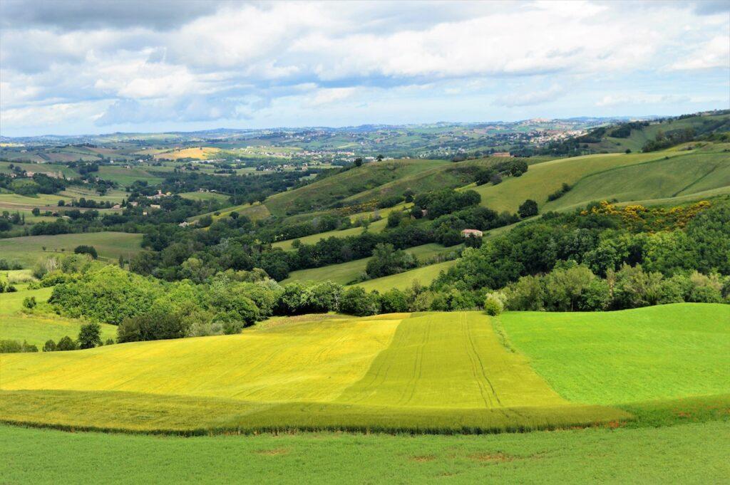 Het uitzicht vanaf b&b Casa dei Colli in Le Marche
