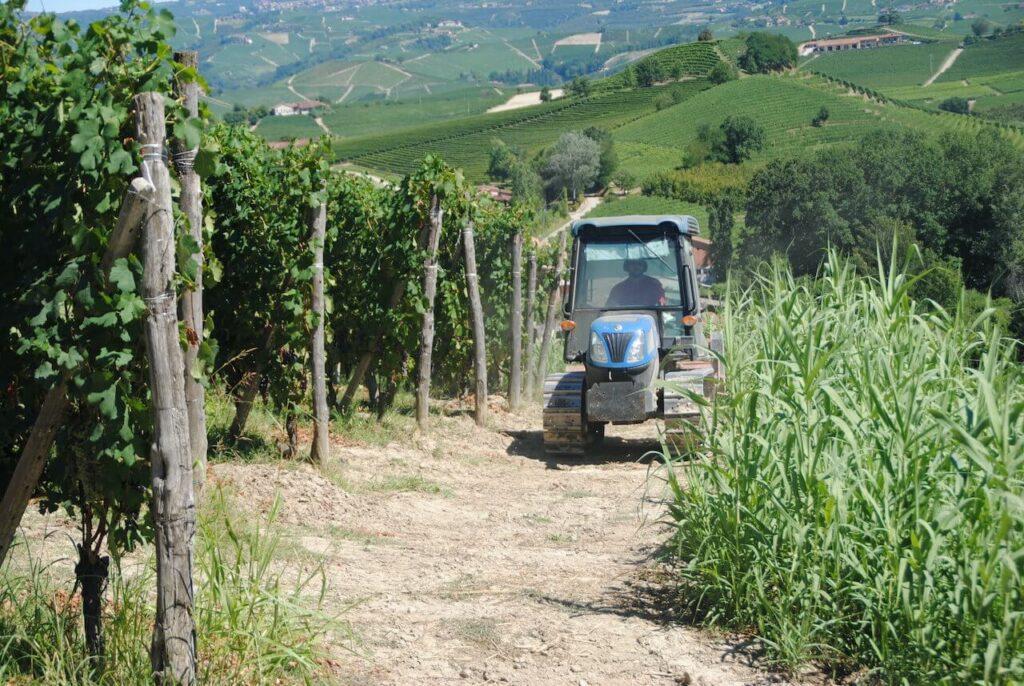 La Morra, een tractor tussen de wijnranken
