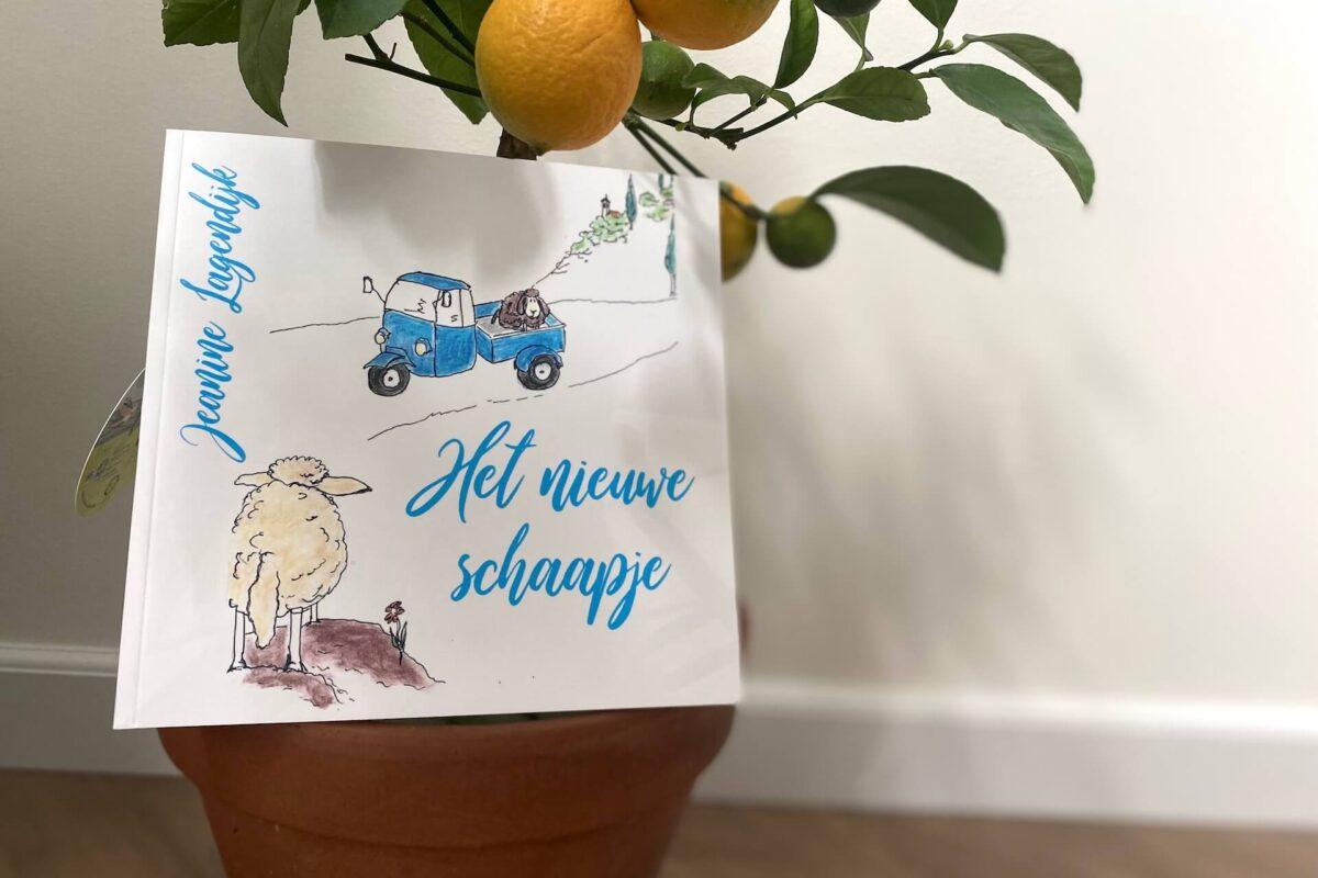 Het nieuwe schaapje van Jeanine Lagendijk